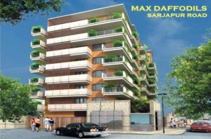 Max Daffodils, Sarjapur Road