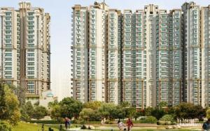 Cosmos Shivalik Homes 2, Sector-16