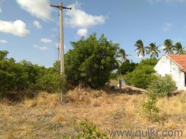 Agricultural land for Sale in Coimbatore | Buy Agricultural land in