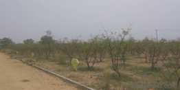 Agricultural land for Sale in Hyderabad | Buy Agricultural land in