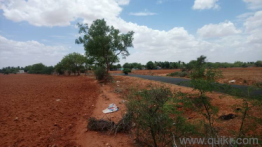 Agricultural land for Sale in Trichy | Buy Agricultural land