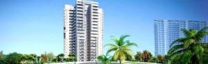 Amrapali Apex Court, Sector-12