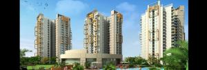Pigeon Spring Meadows, Noida Extension