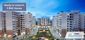 Purva Bluemont, Singanallur